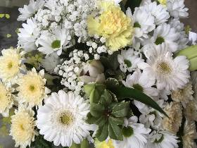 White florists choice handtied